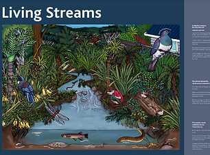 Living streams.png