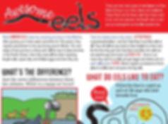AwesomeEels worksheet