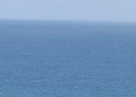 Er wirft unsere Sünden in die Tiefen des Meeres - Online-Gottesdienst am 28. Juni um 11 Uhr
