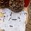 Thumbnail: BIO 01