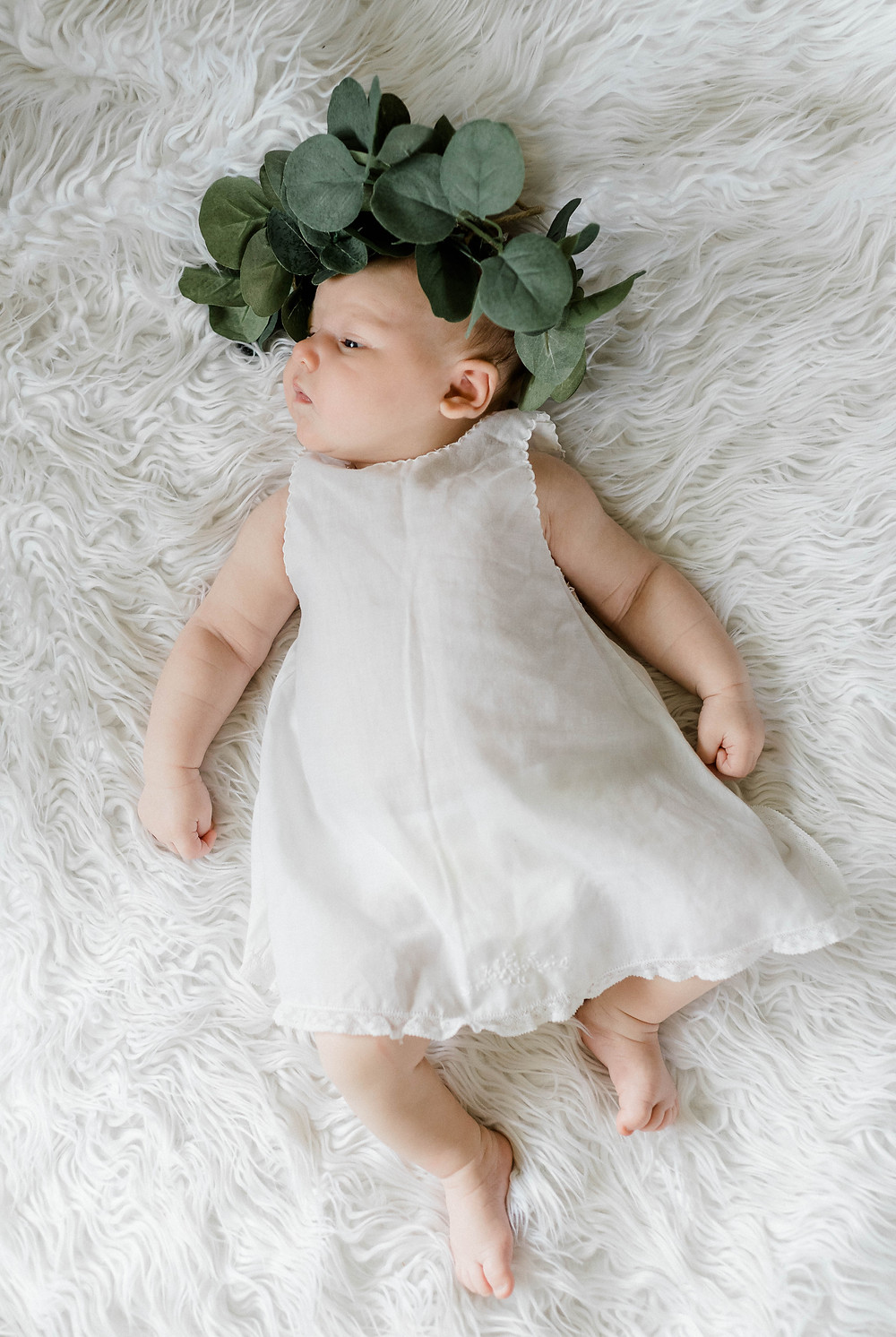 Eucalyptus crown | Newborn baby portraits.