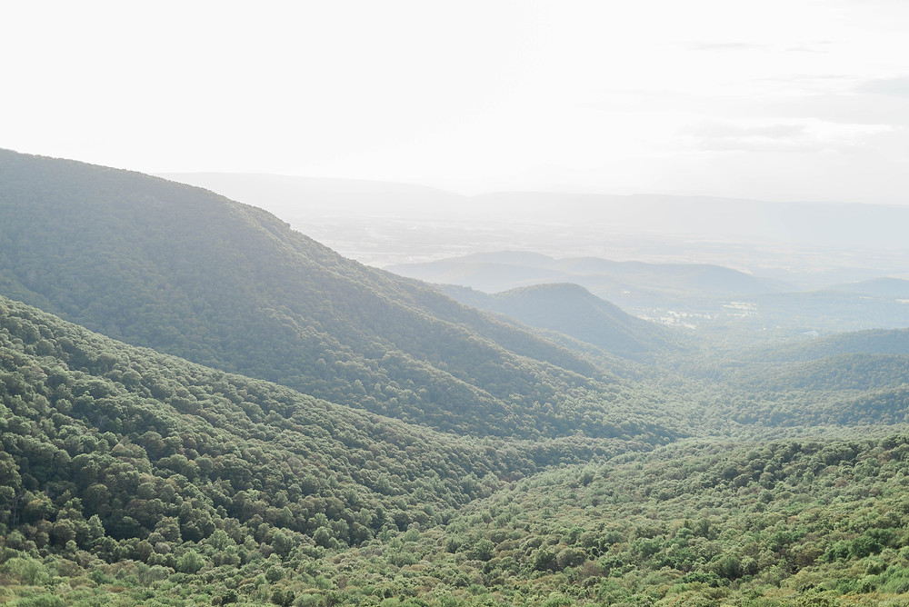 The rolling mountains at skyline drive.