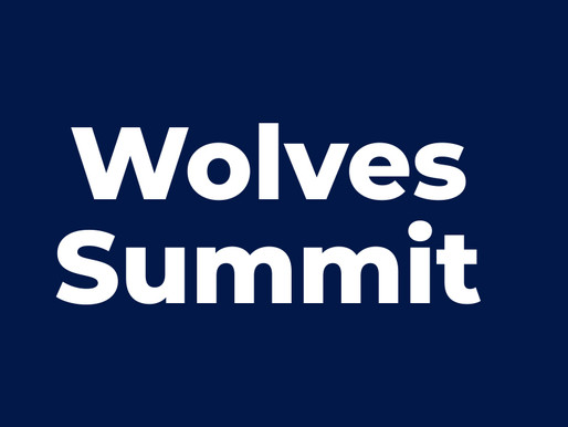 Wolves Summit Interview with the CEO of RAMPmedical