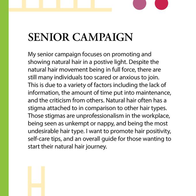 Campaign Intro