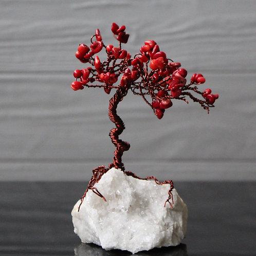 Coral Soul