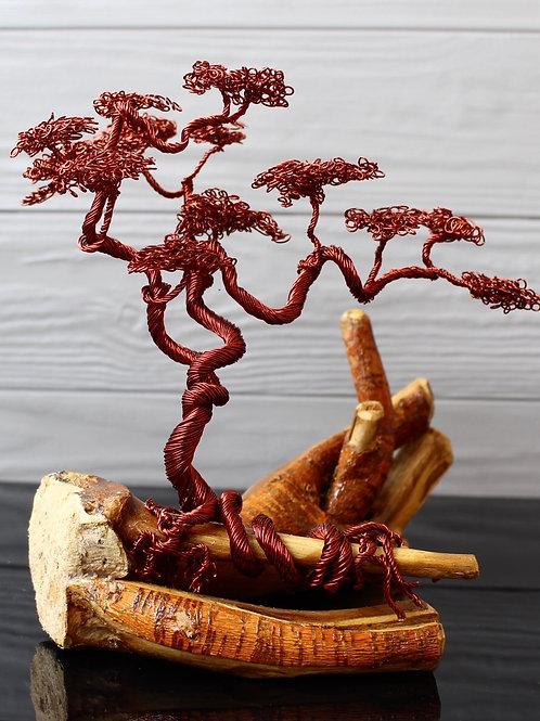 Scattered Bonsai