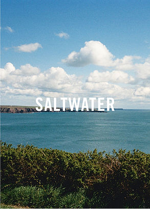 Saltwater recipes