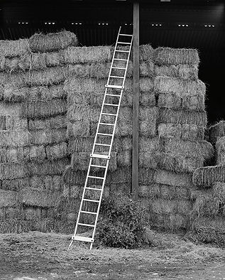 Ladder, hay barn, country, farm