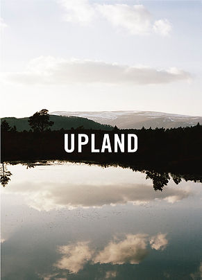 Upland Recipes