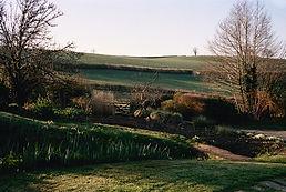 Jessica Seaton's garden