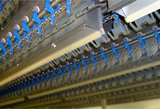 Poultry Processing Conveyors