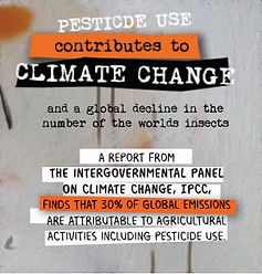 Climate change page.jpg