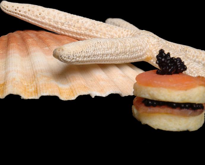 Saumon-homard