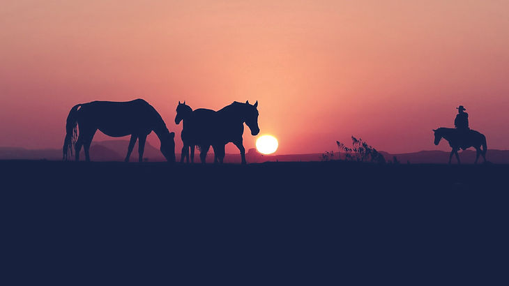 sunset-5643846_1920_edited.jpg