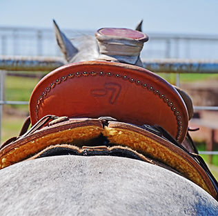 western-saddle-4550212.jpg