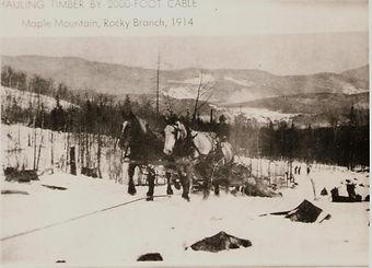 Logging-MapleMountainRockyBranch1914.jpg