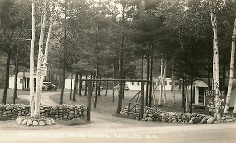 silver springs 1938 550px.jpg