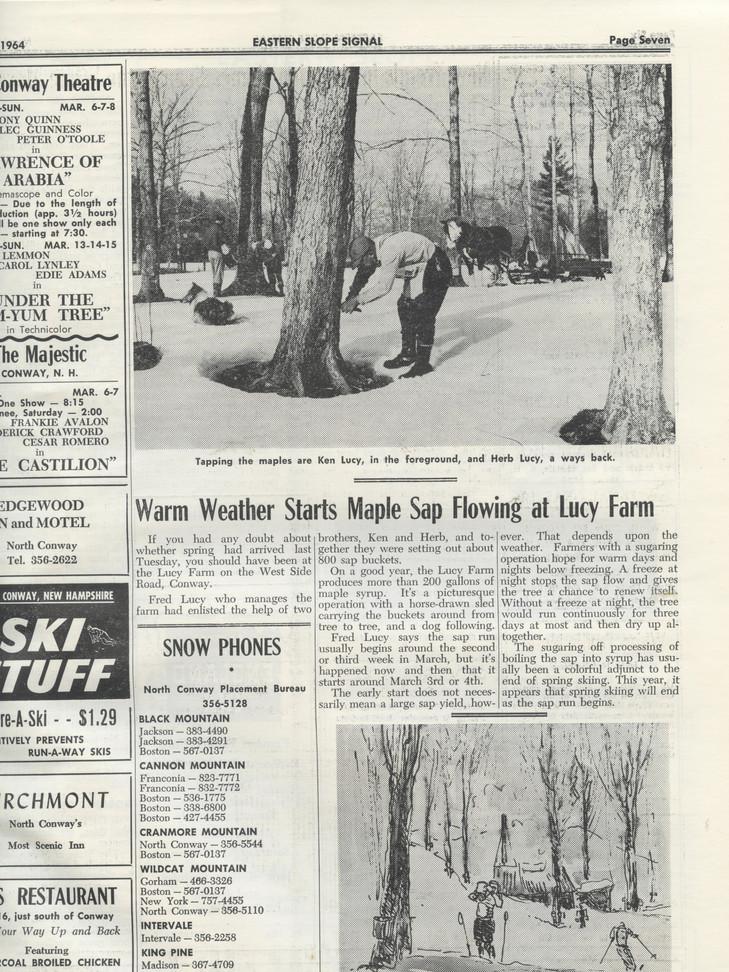1964_March7 LucyFarmSugaring.jpg