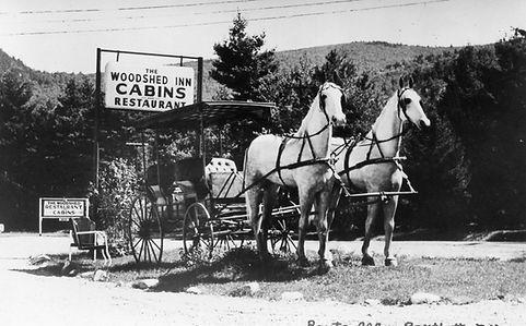 woodshed horses.jpg
