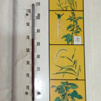 Treflan Weed Killer Thermometer