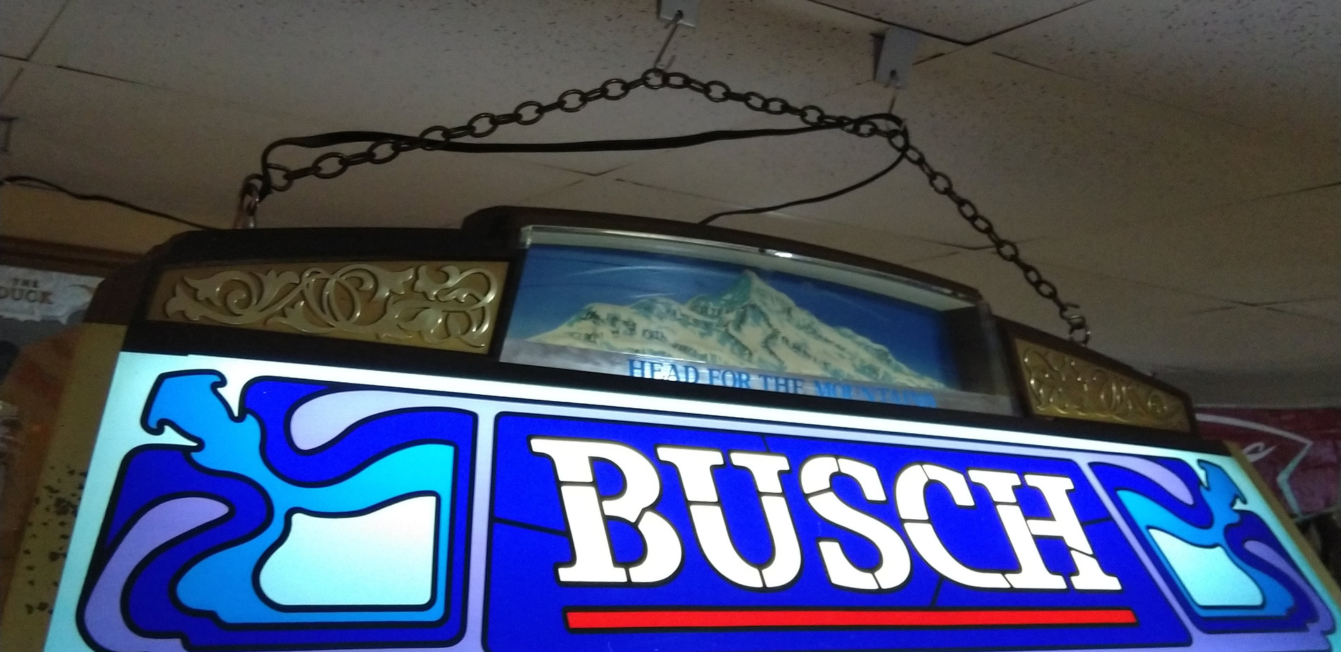Busch Pool Light.jpg
