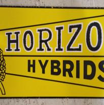 Horizon Hybrids