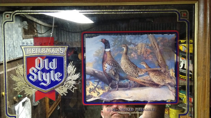 Old Style Mirror (Pheasant).jpg