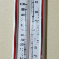 Crows Seeds Thermometer