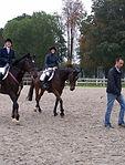 Devis Dentiste Equin sur mesure pour professionnels, centres equestre, poney clubs et écuries