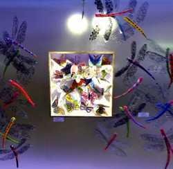 """Exhibition installed -""""Insects"""""""