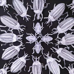 Insect Mandala