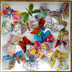 Butterfly Box group work