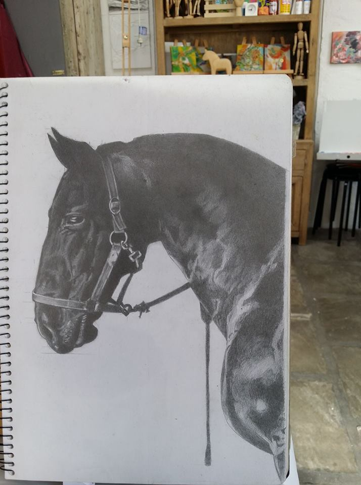 Drawing-Adult Classes