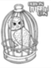 DWC Colouring comp owl.jpg