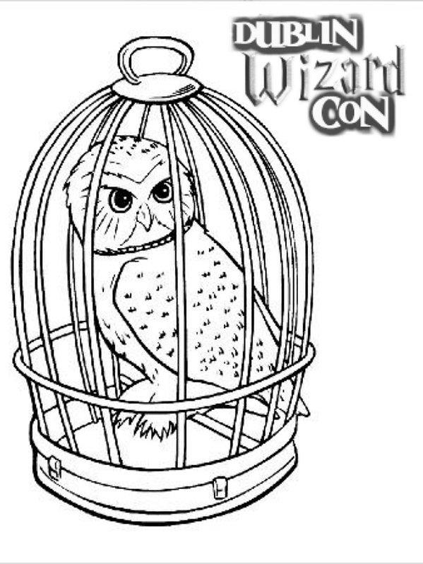 DWC Colouring comp owl.jpg
