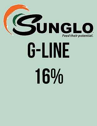 Sunglo G-Line 16%.png