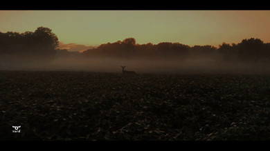 Rural Ohio Drone Footage