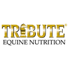 Tribute-Logo-1.png