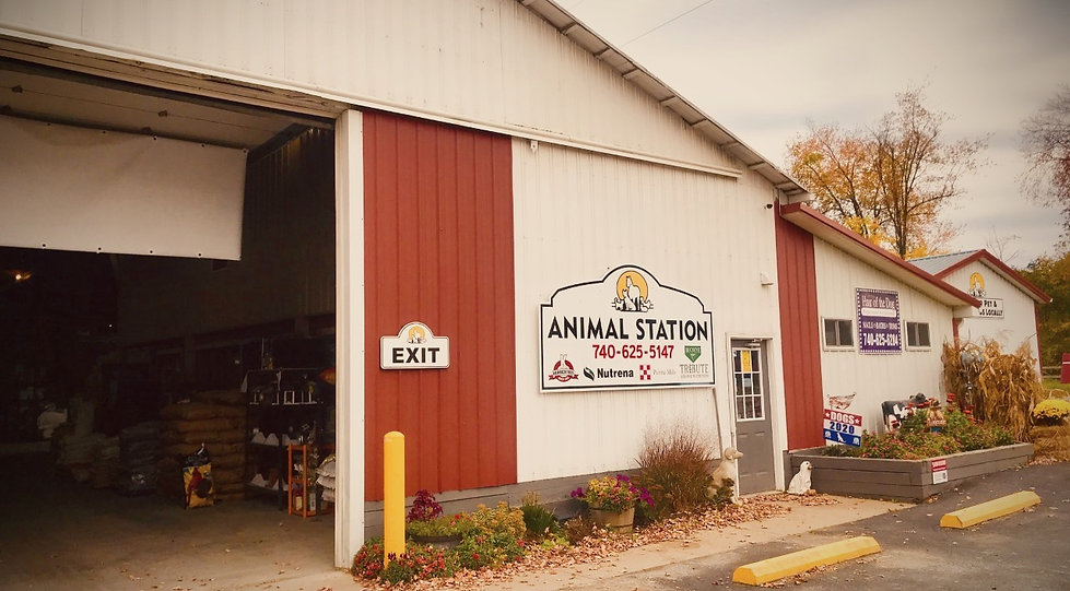 Animal Station Centerburg Ohio