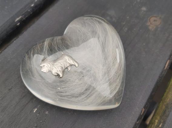 Hjerte med pels og emblem fra halsbånd