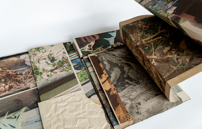 Gather_Book_Photos_JPG34.JPG