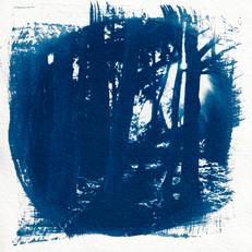 Cyanotype_PrintScans_Edits_010.JPG