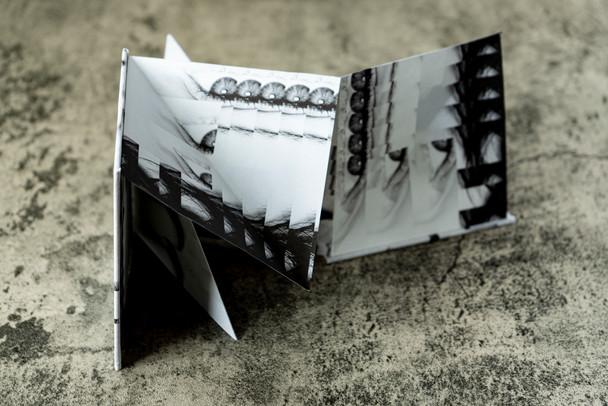 DissectionOfSelf_SmallPetalFoldBook_JPG_09.JPG