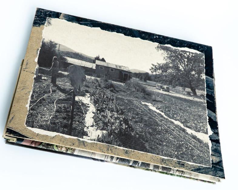Gather_Book_Photos_JPG02.JPG