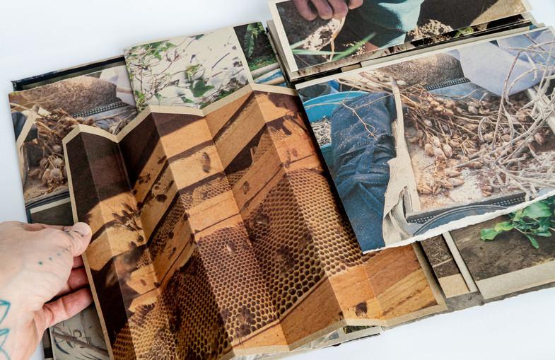 Gather_Book_Photos_JPG21.JPG