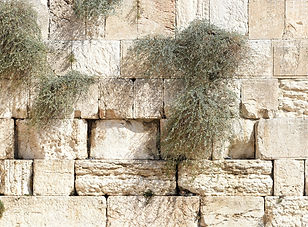 jerusalem-1328645_1920.jpg