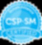 SAI_Certification_CSP-SM_RGB.png