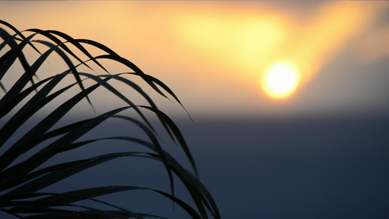 Sunset SB.jpg