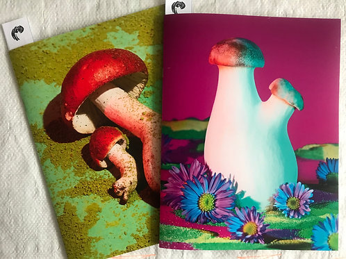 Mushrooms & Friends Zine 1 & 2