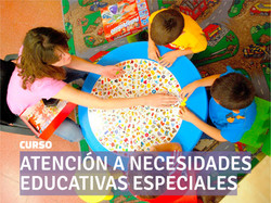 Curso NECESIDADES EDUC ESPECIALES